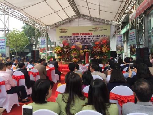 Bắc Giang đưa nông sản chất lượng cao đến với người dân Thủ đô - Ảnh 2.