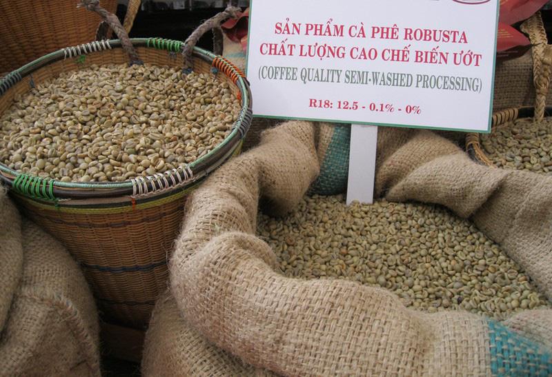 Cà phê Việt Nam: Làm sao đạt mục tiêu xuất khẩu 6 tỉ USD? - Ảnh 3.