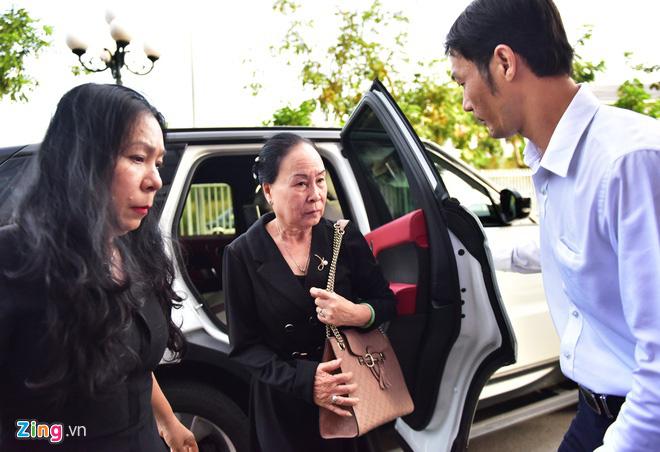 Bà Lê Hoàng Diệp Thảo lại đề nghị giám định tâm thần ông Vũ - Ảnh 2.
