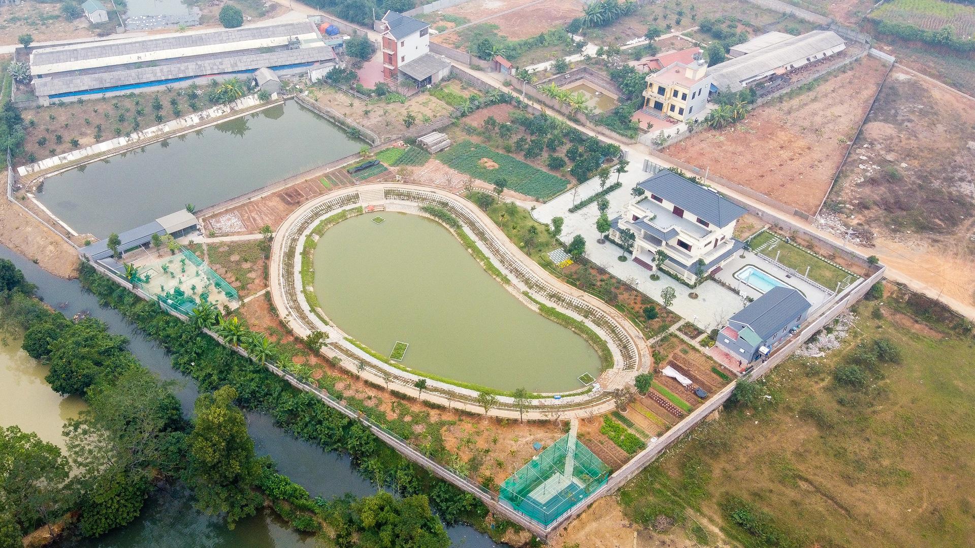 Nhà giàu Hà Nội đua nhau bán nhà nội đô, ra ngoại thành làm biệt thự vườn - Ảnh 2.