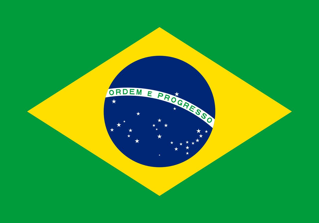 Phòng Thương mại Brazil - Việt Nam - Ảnh 1.