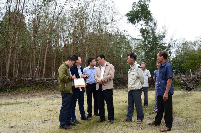 Cây héo úa bất thường quanh dự án thép Hòa Phát Dung Quất - Ảnh 4.