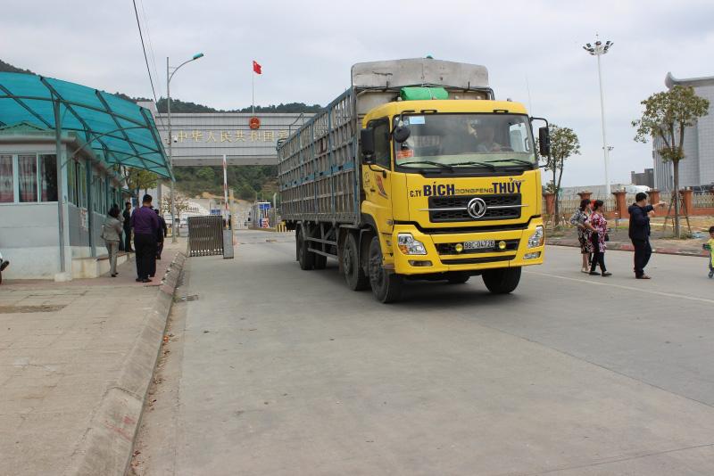 Lạng Sơn: Đưa tuyến đường chuyên dụng vận tải hàng hóa XNK vào hoạt động - Ảnh 1.
