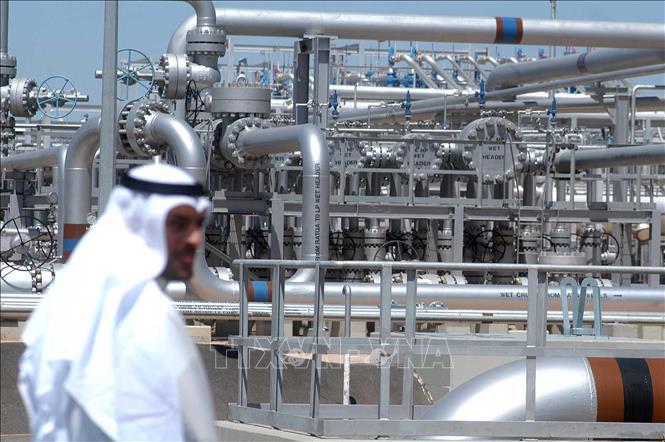 OPEC+ họp bàn cắt giảm sản lượng khai thác dầu - Ảnh 1.