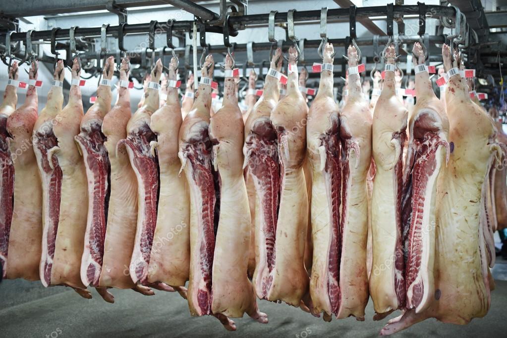 depositphotos_80153134-stock-photo-pork-carcasses-on-hooks