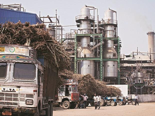Giá đường Ấn Độ lao dốc cản trở chính sách thúc đẩy sản xuất  - Ảnh 1.