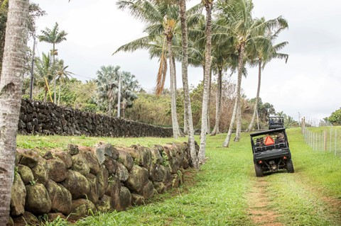 Bên trong biệt phủ bí mật của CEO Facebook ở Hawaii - Ảnh 3.