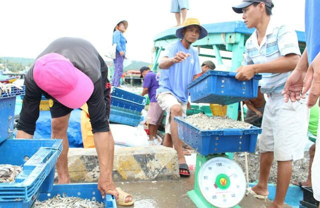 Masan Phú Quốc nói dự thảo tiêu chuẩn nước mắm bị tuýt còi... khả thi - Ảnh 1.