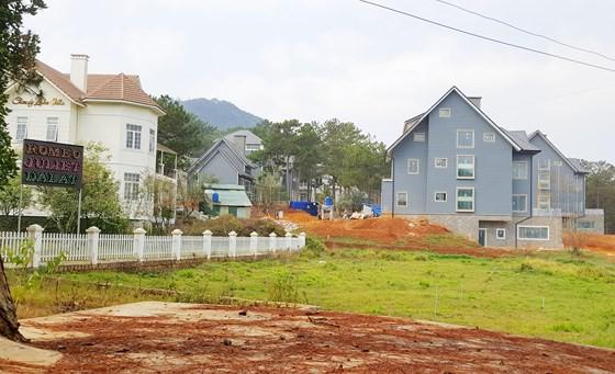 Dự án nghỉ dưỡng cao cấp phá rừng trái phép ở hồ Tuyền Lâm - Ảnh 1.