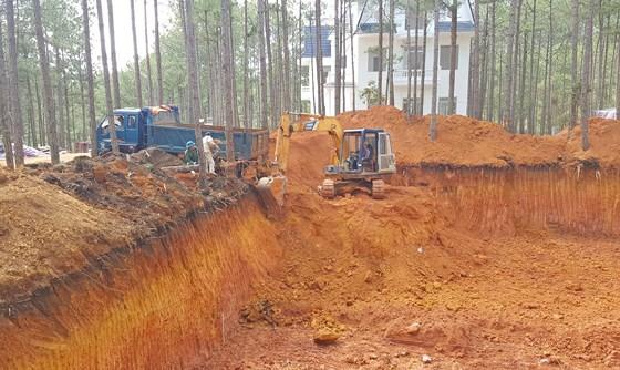 Dự án nghỉ dưỡng cao cấp phá rừng trái phép ở hồ Tuyền Lâm - Ảnh 2.
