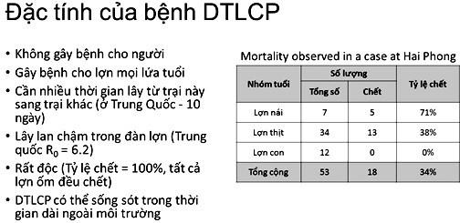 FAO: Việt Nam có thể thắng được dịch tả lợn châu Phi nếu… - Ảnh 2.