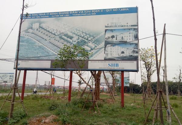 Gần 2.000 ha đất bỏ hoang tại Mê Linh: Nhà đầu tư lao đao - Ảnh 1.