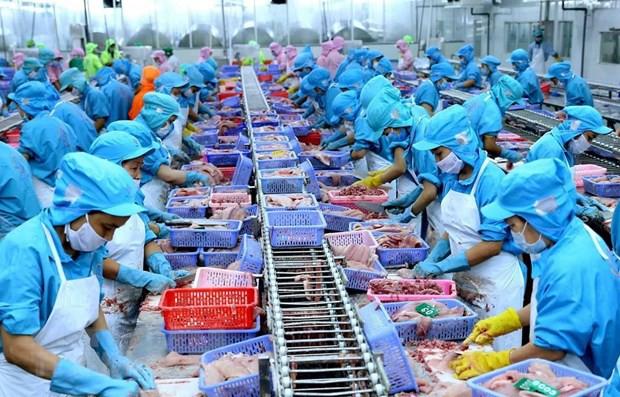 Thủy sản Việt Nam nỗ lực hiện thực hóa những lợi ích từ CPTPP - Ảnh 1.