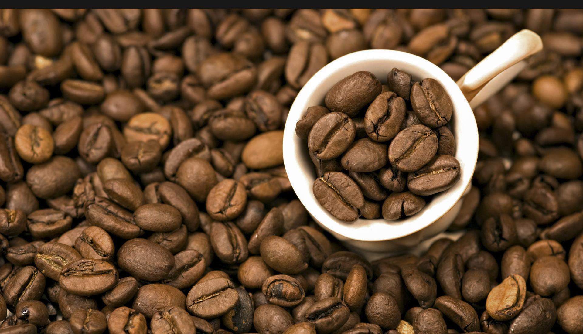 [eMagazine] Cà phê đặc sản: Cửa ngách để nâng tầm cà phê Việt - Ảnh 6.