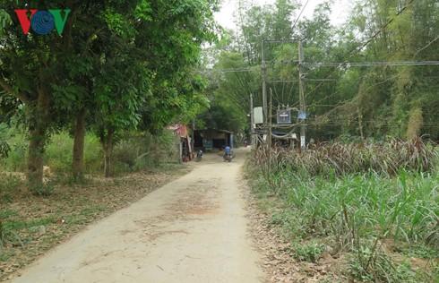 Sốt đất đã đến… bụi tre làng của vùng đất Quảng Ngãi - Ảnh 1.