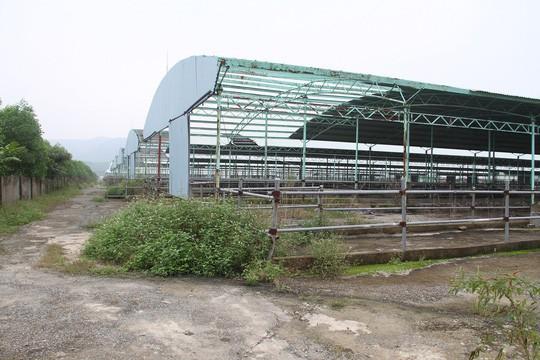 Điều tra nhà đất của các doanh nghiệp, cá nhân liên quan ông Trần Bắc Hà - Ảnh 3.