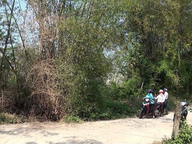 Tin tức Bất động sản ngày 8/3: Nhìn lại cơn sốt đất Đà Nẵng đầu năm... - Ảnh 2.