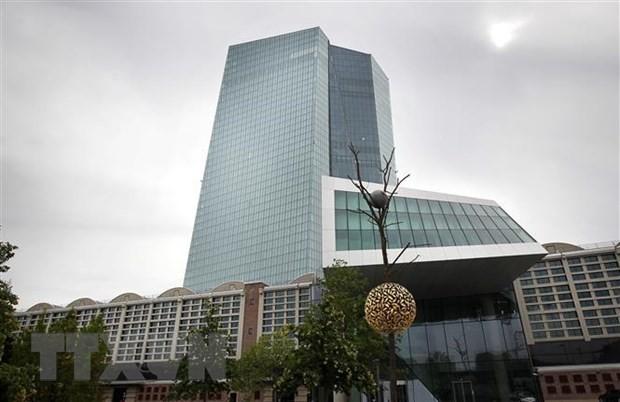 ECB hạ dự báo tăng trưởng Eurozone, giữ nguyên lãi suất thấp kỷ lục - Ảnh 1.