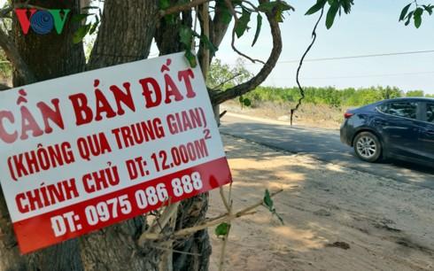 Đất nông nghiệp quanh Sân bay Phan Thiết tăng giá vùn vụt - Ảnh 2.