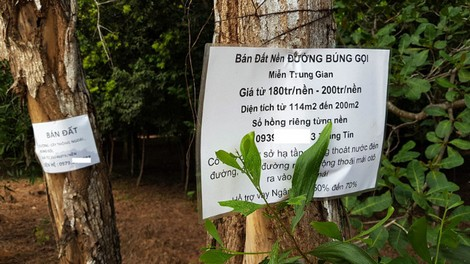 Bất trắc chợ đất đai ở Phú Quốc - Ảnh 1.