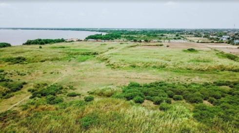 KCN Phước Đông bị bỏ hoang 12 năm vì doanh nghiệp không bàn giao đất - Ảnh 1.