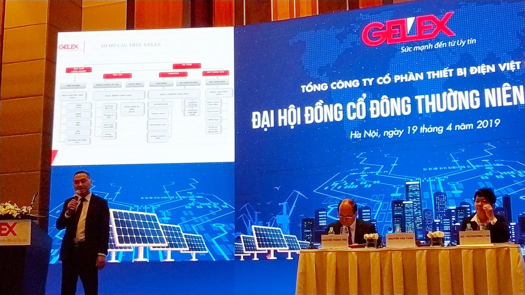 ĐHCĐ Gelex: Chỉ sáp nhập những công ty đầu ngành, loại 1 - Ảnh 2.