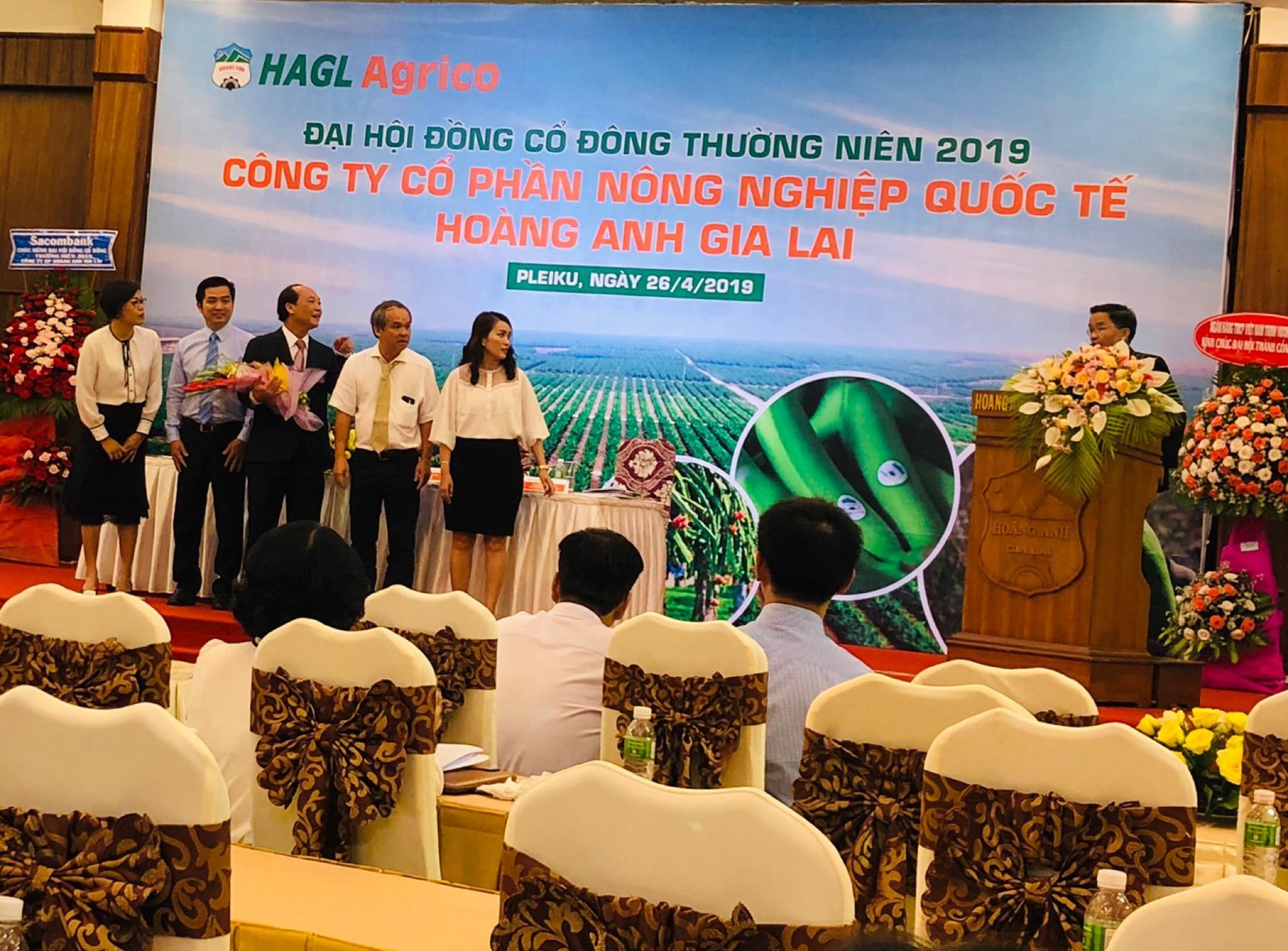 HAGL Agrico không bán 20.000 ha đất cho Thaco, cố gắng năm 2020 có lợi nhuận để chia cổ tức - Ảnh 1.