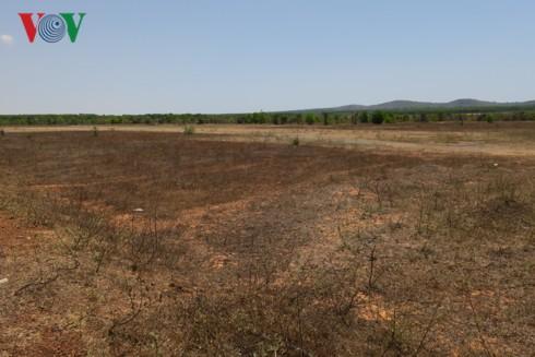 Tin tức Bất động sản ngày 26/4: HAGL Agrico không bán 20.000 ha đất cho Thaco, người dân có được lợi từ sốt đất Phan Thiết?... - Ảnh 2.