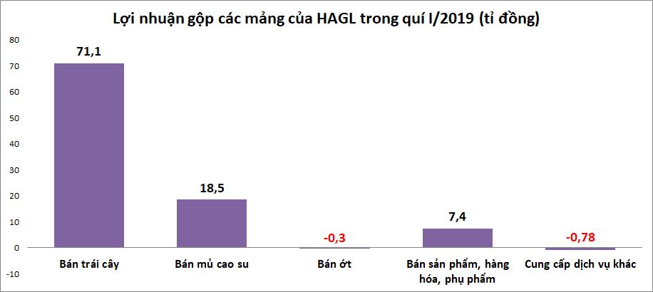 Lỗ 99 tỉ đồng trong quí I, HAGL Agrico đã có 3 quí thua lỗ liên tiếp - Ảnh 3.