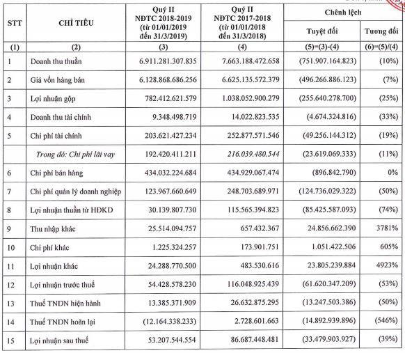 Lợi nhuận, doanh thu cùng sụt giảm, tổng tài sản của Hoa Sen cũng bốc hơi gần 2.900 tỉ trong quí I/2019 - Ảnh 2.