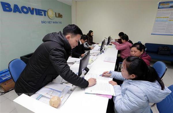 Triển vọng của thị trường bảo hiểm Việt Nam trong năm 2019 - Ảnh 1.