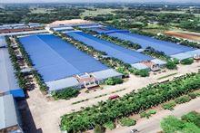 Luồng vốn lớn chảy vào bất động sản công nghiệp - Ảnh 5.