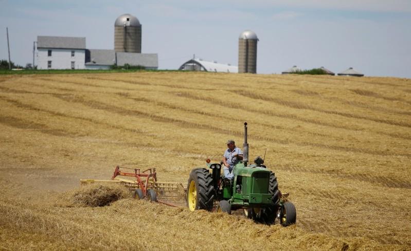 Mỹ dự kiến hỗ trợ thêm cho nông dân vì tranh chấp thương mại với Trung Quốc leo thang - Ảnh 1.