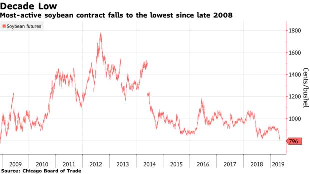 Mỹ - Trung đấu đá, giá đậu nành xuống mức thấp nhất một thập kỉ - Ảnh 2.