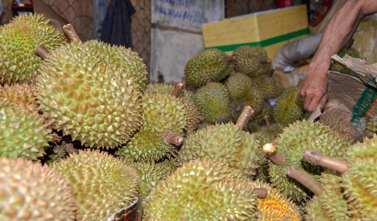 Thời tiết khắc nghiệt ảnh hưởng đến mùa sầu riêng Campuchia - Ảnh 1.