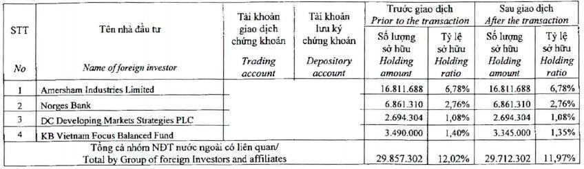 Dragon Capital thoái bớt vốn tại Hải Phát Invest và Đầu tư Hạ tầng (CII)  - Ảnh 2.