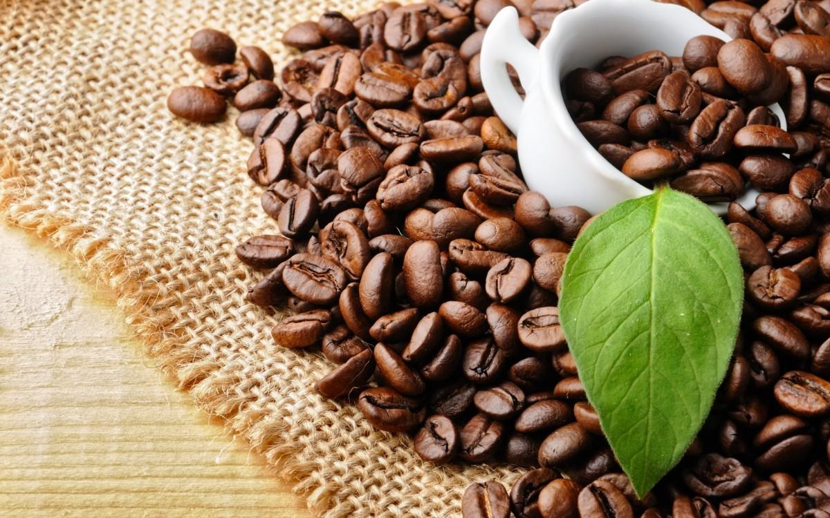 Giá một tách cà phê sẽ rẻ hơn? - Ảnh 1.