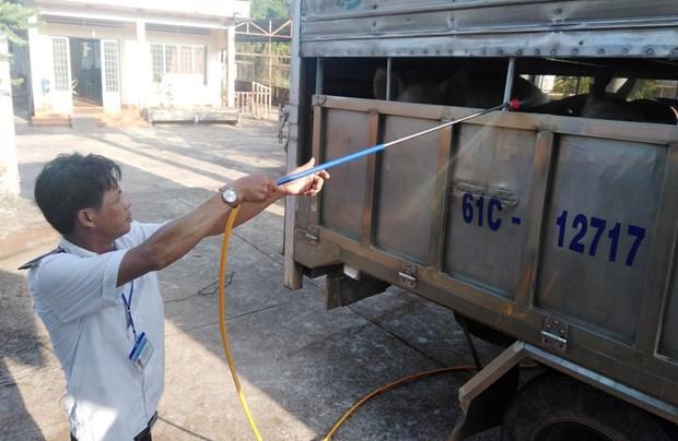 Kiểm soát chặt việc vận chuyển lợn và sản phẩm từ thịt lợn - Ảnh 1.