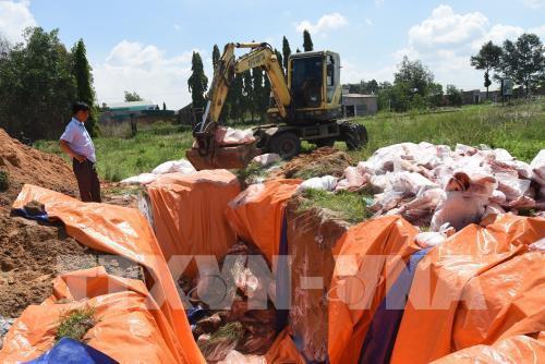 Tiêu huỷ 4 tấn thịt lợn nhiễm tả lợn châu Phi giấu trong kho lạnh - Ảnh 3.