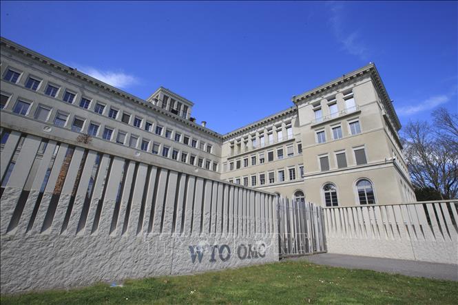 WTO cảnh báo viễn cảnh u ám của thương mại toàn cầu - Ảnh 1.
