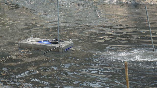Chuyên gia Nhật phân tích việc làm sạch sông Tô Lịch bằng công nghệ Nano - Bioreactor - Ảnh 4.