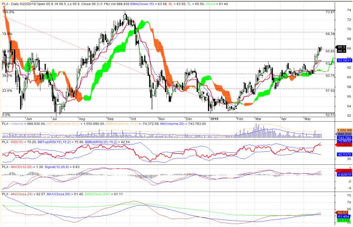 Cổ phiếu tâm điểm ngày 23/5: PLX, GVR, NBB - Ảnh 1.
