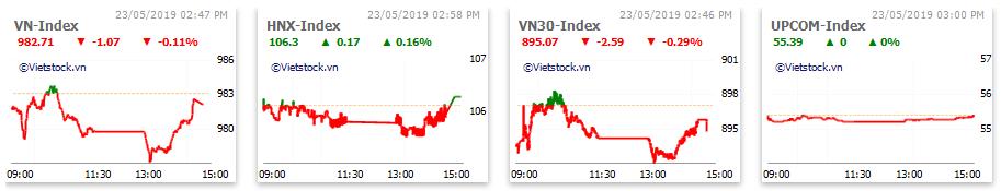 Thị trường chứng khoán 23/5: Thủy sản hút dòng tiền, thanh khoản PVD cao kỉ lục hơn 10 năm, VN-Index vẫn giằng co mạnh quanh 980 điểm - Ảnh 1.