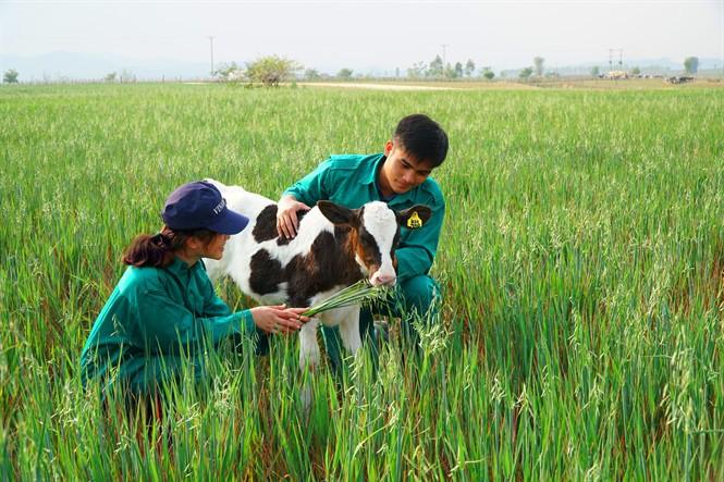 Vinamilk liên doanh khởi công tổ hợp Resort bò sữa Organic 5.000ha tại Lào - Ảnh 4.
