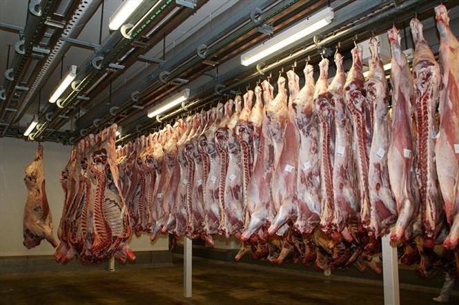 Nếu không sớm chặn dịch, giá thịt lợn sẽ tăng rất cao vì nguồn cung khan hiếm - Ảnh 3.