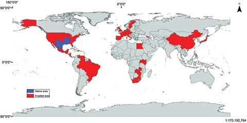 Nhiều nơi trên thế giới từng hối hận vì thảm họa nuôi tôm hùm đất - Ảnh 2.
