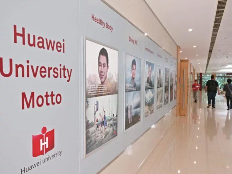 Đại bản doanh tỉ đô của Huawei: Gần 60.000 nhân viên không dùng tiền mặt, ngắm thiên nga đen và chụp ảnh sống ảo khi rảnh rỗi - Ảnh 2.