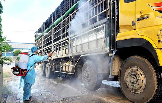 Dịch ASF lan rộng tại Quảng Nam khi heo nhiễm bệnh ngang nhiên xuyên Việt - Ảnh 1.