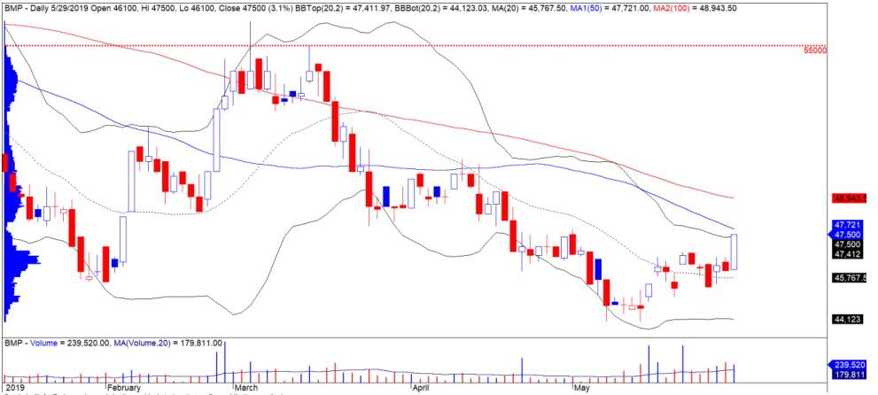 Cổ phiếu tâm điểm ngày 31/5: BMP, LCG, MSR - Ảnh 1.