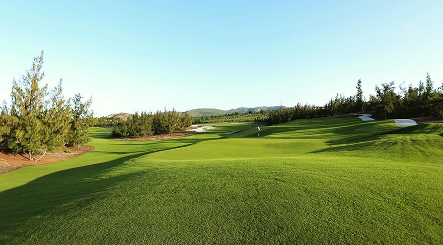 Sonadezi Châu Đức vay 455 tỉ đồng làm sân golf tại Bà Rịa - Vũng Tàu - Ảnh 1.